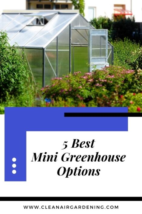 green house in flower garden with text overlay five best mini greenhouse options
