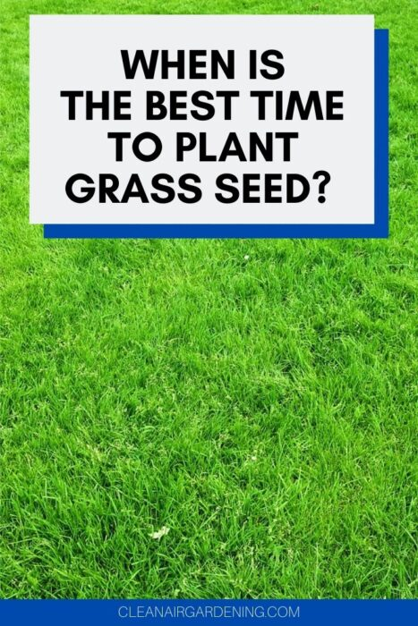 lawn with text overlay When is the Best Time to Plant Grass Seed