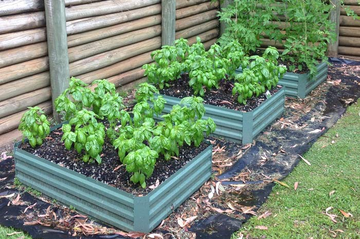 being food safe and having lawn care in raised beds, self watering raised beds