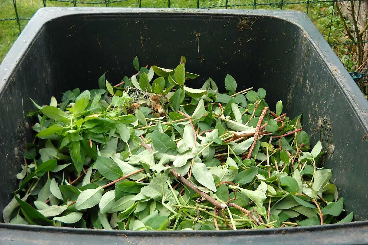 Green Waste Composting Recycling