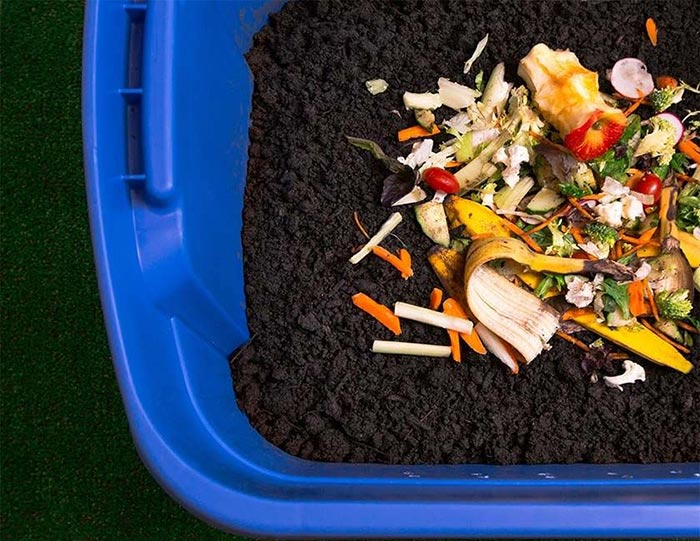 fruit and vegetable composting bin