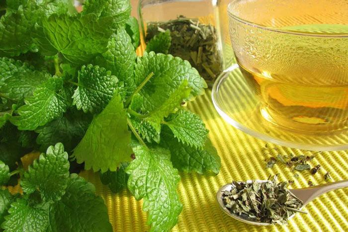 lemon mint teas