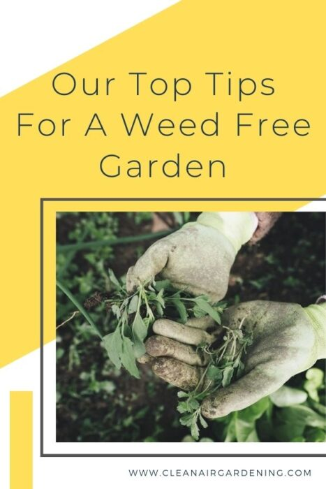gardening gloves weeding with text overlay our top tips for a weed free garden